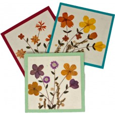 Flower Cards - Flower Garden (assorted pack of 6 cards)
