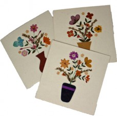 Flower Cards - Vase (assorted pack of 6 cards)