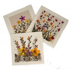 Flower Cards - Meadow (assorted pack of 6 cards)