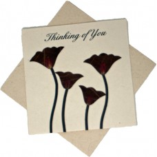 Sympathy Cards - Thinking of You - Single Red Flowers (pack size 6)